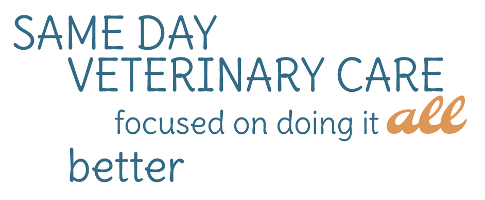 Same day veterinary care focused on doing it all better
